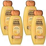 Garnier Hair Care Whole Blends Honey Treasures Repairing Shampoo