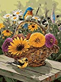 Golden Maple DIY Pre-Printed Canvas Oil Painting Gift Adults Kids Paint Number Kits Home Decorations- Blue Birds Daisy 16*20 inch