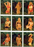 2007 Benchwarmer Gold Edition Trading Cards Set