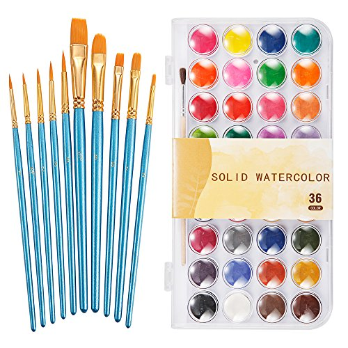 Watercolor Paint Art Set, 36 Colors Professional Watercolor Paint Set with 10 Pcs Watercolor Artist Set Brush for Watercolor Acrylic Painting by E-Conoro