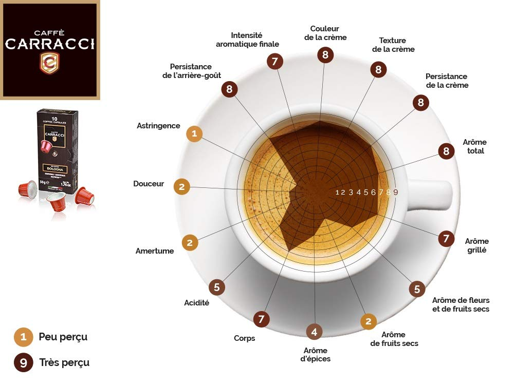 Caffè Carracci 100 capsulas compatibles Nespresso, mézcla BOLOGNA: Amazon.es: Alimentación y bebidas