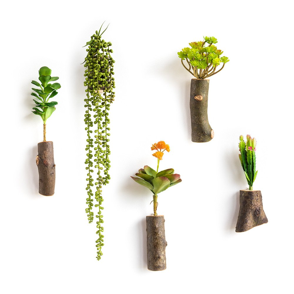 WOOD MEETS COLOR Handmade Hanging Vases, Wall Vases Arrangement, Vertical Planters, With Artificial Plants, 5 PCs (Succulent plants) by WOOD MEETS COLOR