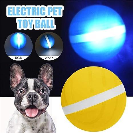 Domybest - Pelota eléctrica para Animales de compañía, Pelota ...