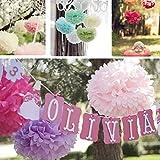 Raylans 5Pcs Wedding Party Decor Home Hanging Tissue Paper Pom Pom Lantern Flower Balls,Peach,8