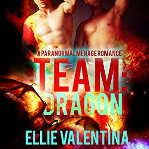 Team: Dragon Audiobook