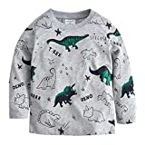 Popshion Little Boys Cotton Crewneck T-Shirt Cartoon Long Sleeve Tops Tees 1-7T Toddler(Dino-03 3-4Y/4T)