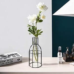 Metal Frame Vase Tube Glass Planter Terrarium with Geometric Black Metal Stand,Office Desktop Home & Office Decor Handmade(Cylinder)