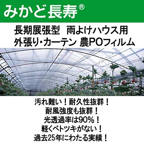 0.07mm厚 700cm幅 100m みかど長寿 70A 雨よけハウスカーテン用 農PO 透明 代不 B01LX6UREB