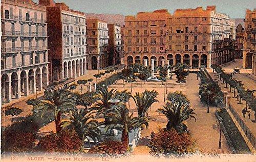 (Square Nelson Alger Algeria, Alger, Algerie Postcard)