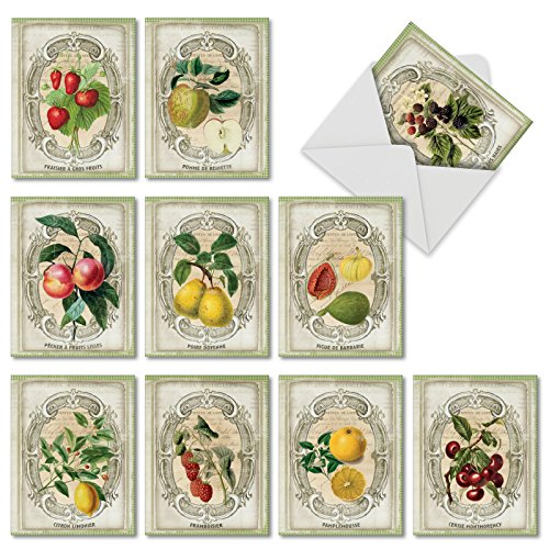 10 Assorted 'French Fruit' Thank You Cards with Envelopes 4 x 5.12 inch, Boxed Set of Vintage-Inspired Portraits of Fruit, Including Strawberries, Lemons and More Gratitude Notes, M4190TYG-B1x10