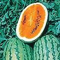 Burpee Orange Tendersweet Watermelon Seeds 60 seeds