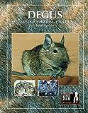 Degus: Biologie, Haltung, Zucht (NTV Kleinsäuger)