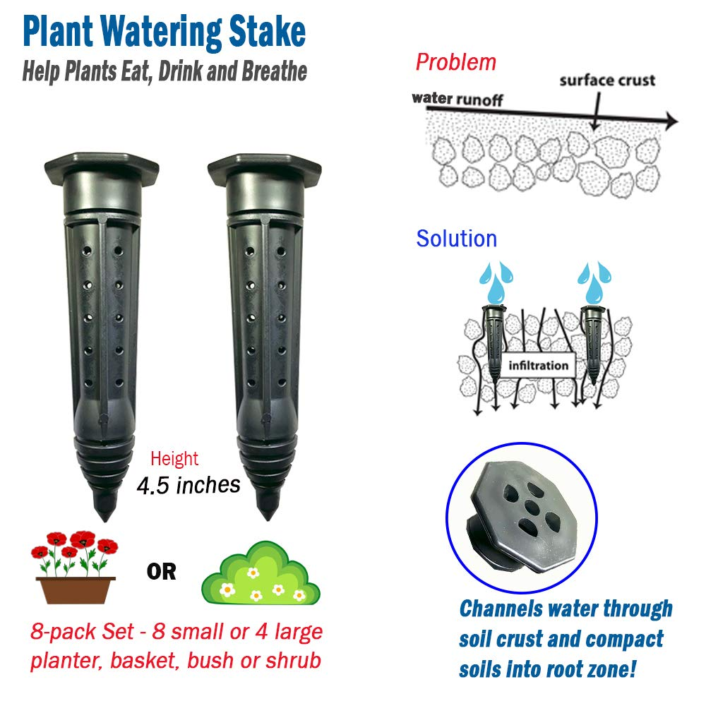 Plant Watering Stake for Containers, Bushes, Shrubs, Watering Spike, Planter Waterer for Indoor Outdoor Plants (8) by Smart Spring