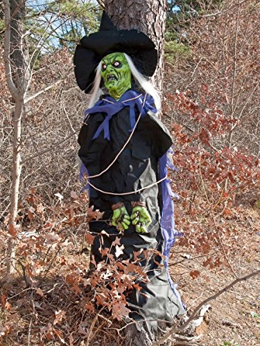 Morbid Enterprises Tree Hugging Witch -