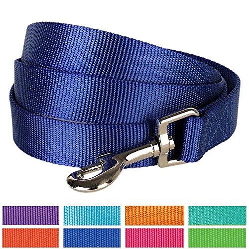 Blueberry Pet 7 Colors Durable Classic Dog Leash 5 ft x 5/8