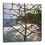 3dRose dpp_6074_1 Hawaiian Tree Wall Clock, 10 by 10-Inch