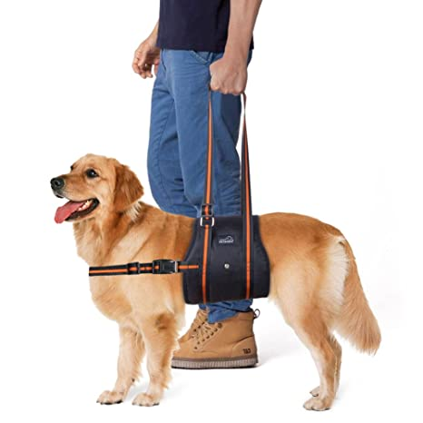 61R19cujStL._SX466_ amazon com petbaba dog lift harness, support lifting sling assist