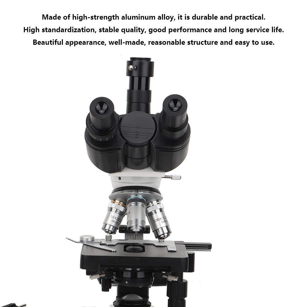 Adjustable Professional Practical Binocular Wide-Angle Lens Biological Microscope for School Lab U.S. regulations Microscope