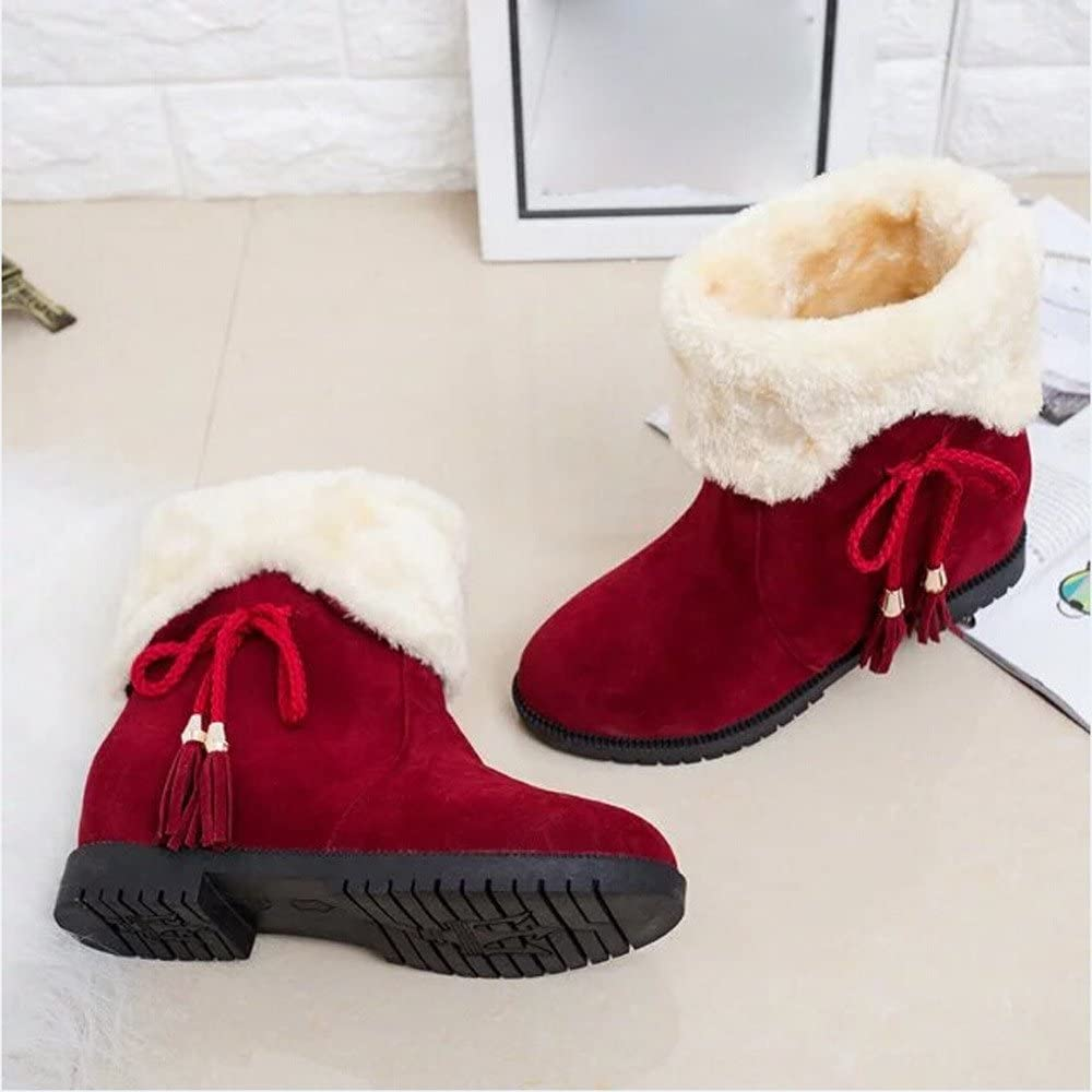 HTDBKDBK Women Boots Winter Ladies Snow Boots Winter Ankle Boots Women Shoes Heels Winter Boots Fashion Shoes
