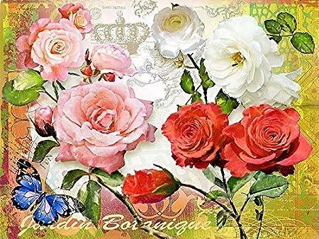 Rahmen-Kunst Imagen – Isa Florenti: Jardin Botánico Lienzo Mariposa Flores Rosas Flores Floral Moderno Colorido - 60x80: Amazon.es: Hogar