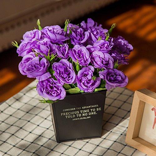 En el dormitorio, salón amueblado con hierro forjado flores ...