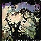 Burning From the Inside (Vinyl)[Importado]