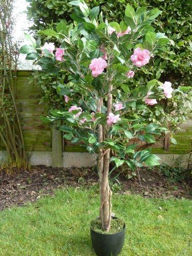 UK-Gardens Großer Künstlicher Baum 10 cm Kamille Eingepflanzt Pflanze mit Rosa Blumen in einem Hochleistungsfähigen Granulat im Topf - Haus Pflanze oder Büro Pflanze