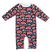 Winter Water Factory Long Sleeve Organic Cotton Romper Coverall, Boys, Girls, & Unisex Baby (6M (3-6 Months), Navy Foxes & Hedgehogs)