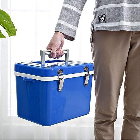 Chirsemey - Nevera portátil de 8 litros para Coche, para Viaje ...