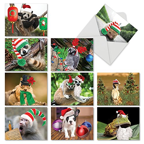 (Santa Capped Creatures' Blank Christmas Cards, Boxed Set of 10 Funny Animals with Santa Hats Blank Christmas Cards 4 x 5.12 inch, Assorted Silly Critter Holiday Notes with Envelopes M6470XSB)