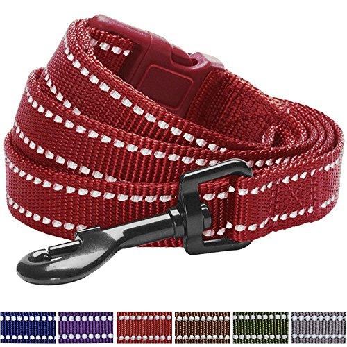 Blueberry Pet 6 Colors Durable 3M Reflective Classic Dog Leash 5 ft x 3/4