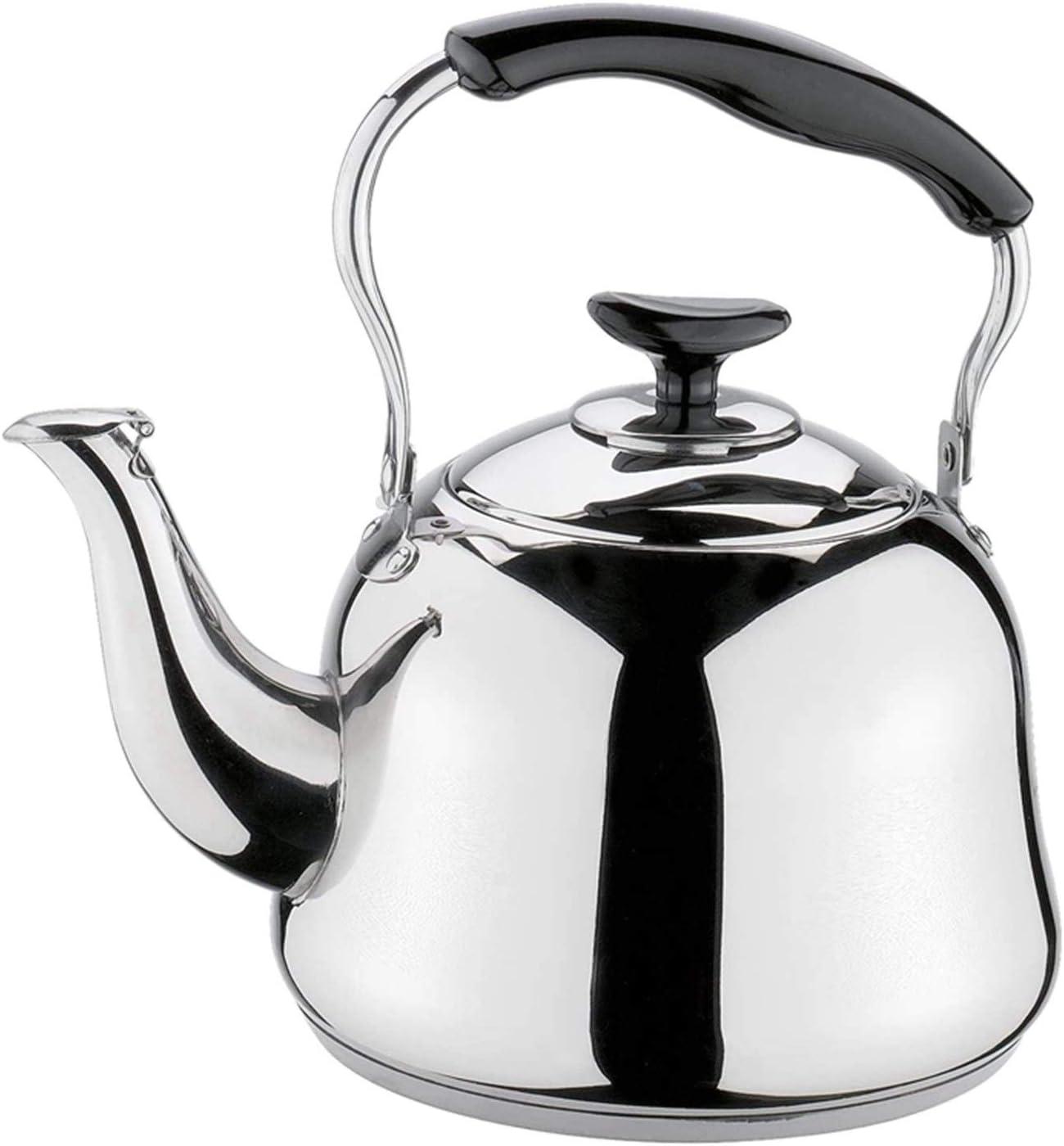 Dpsyszd Tetera 1L Caldera de té con Cartucho filtrante de Ahorro de energía de Acero Inoxidable Caldera de Acero Inoxidable Caldera