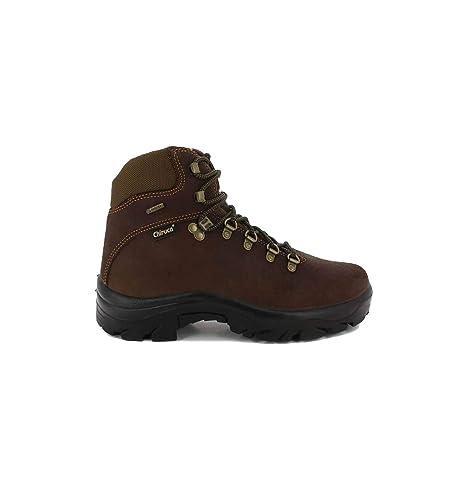 561c9bc32ab Chiruca - CHIRUCA POINTER 01 GORE-TEX - 114: Amazon.es: Zapatos y  complementos