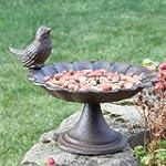Cottage Garden Cast Iron Bird Bath &...