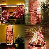 Solar LED String Light, Elevin(TM) 2M 20LED Solar Cork Wine Bottle Stopper Copper Wire String Lights Fairy Lamps (Red)