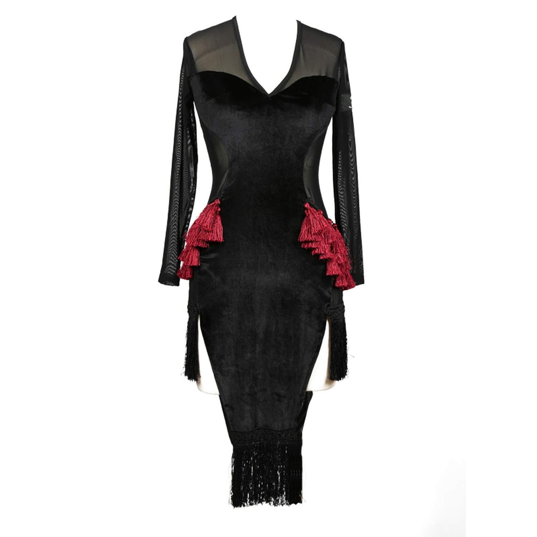 Tassel Transparent Latin Dance Dress Women Tango Dress Modern Dance Costume for Women,Black,S by Colourful Day Dance Dress