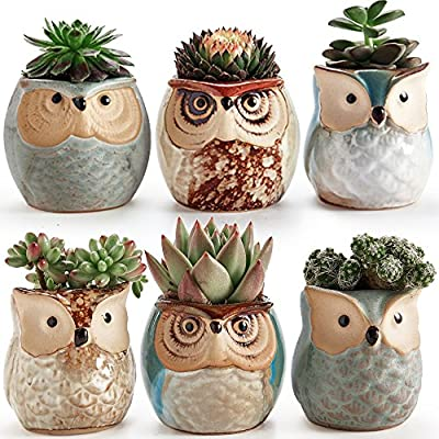 Sun-E 2.5 Inch Owl Pot Ceramic Flowing Glaze Base Serial Set Succulent Plant Pot Cactus Plant Pot Flower Pot Container Planter Bonsai Pots with A Hole Perfect Gift Idea 6 in Set - New SUN-E collections!OWL OWL OWL!!!Ideal for adding a dash of refreshingly modern design to your home,Great Gift - this ceramic pot can serve a variety of purposes. Perfect gift for family and friends who love succulent plants with a green thumb or keep it in your own home for a touch of clean, modern style in your living space. Material:Ceramic(Made of top-quality clay and baked in high temperatures);Package content:6pcs*Pot. Approximate Size: 2.2 x 2.2 x 2.4 inch (L x W x H). - living-room-decor, living-room, home-decor - 61R3dU%2BUfUL. SS400  -