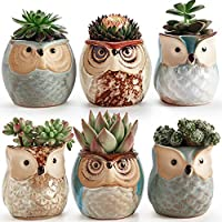 SUN-E 2.5 Inch Owl Pot Ceramic Flowing Glaze Base Serial...