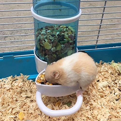 Automatic pet feeder bird hamster small animal