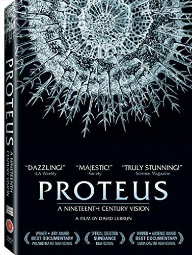 - Proteus