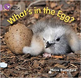 Book What's in the Egg?: Band 00/Lilac (Collins Big Cat)