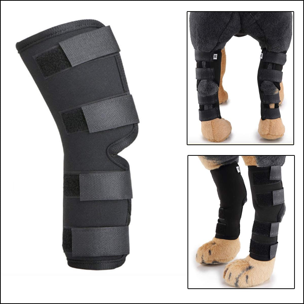 Canine Knee Brace for Torn acl Hind Leg