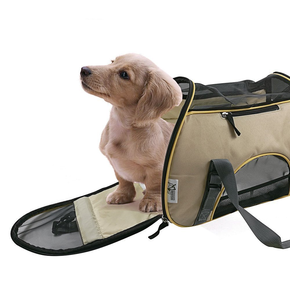 Amazoncom Dog Carriers Dog Car Travel Dog Strollers More - Cat and dog duo take the best travel photos ever