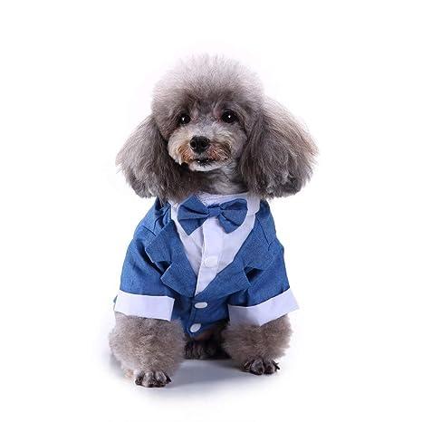RFVBNM Camisa/Camiseta para Perros Ropa para Perros Raya ...