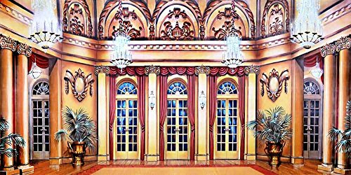 GladsBuy beautiful inroom 20' x 10' Computer Printed Photography Backdrop Ballroom Theme Background ACP-444 by GladsBuy