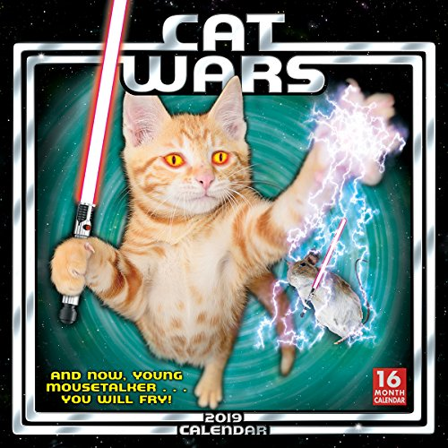 2019 Cat Wars 16-Month Wall Calendar: by Sellers Publishing, 12