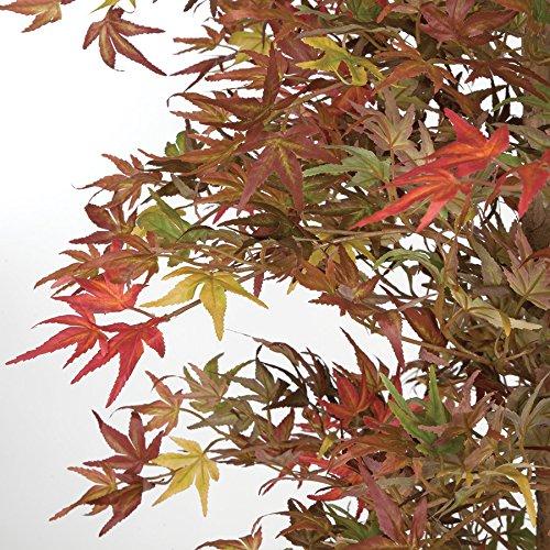 6'6'' Mini Japanese Maple Silk Tree w/Pot -Red/Green by SilksAreForever