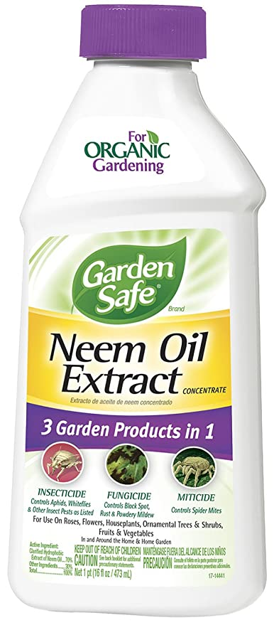 Amazon.com : Garden Safe Neem Oil Extract Concentrate (HG-83179) (16 ...