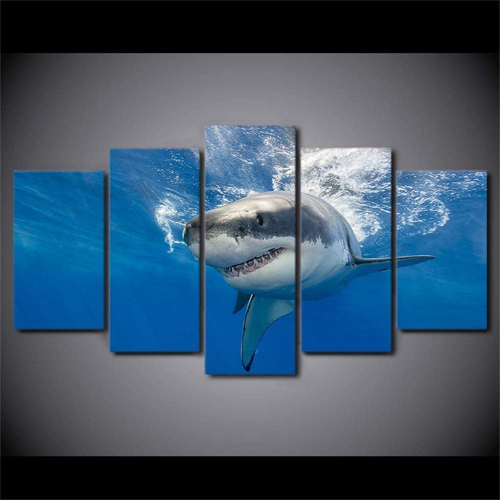 Marine Life Shark 5PCS Wall Art Home Wall Decorations for Bedroom Living Room Oil Paintings Canvas Prints (Framed,8x14inx2 8x18inx2 8x22in)