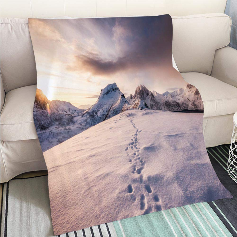 color8 59 x 80in BEICICI Comforter Multicolor Bed or Couch Landscape of Sequoia National Park Fun Design All-Season Blanket Bed or Couch